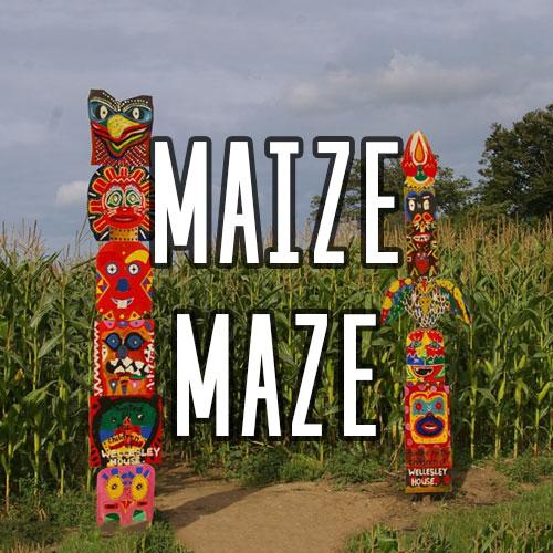 Button for Maize Maze Activity at Quex Activity Centre, Quex Park