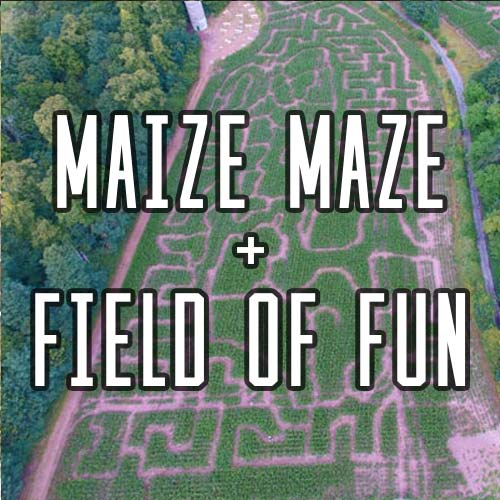 Button for Maize Maze Activity at Quex Activity Centre, Quex Park