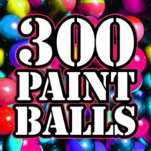 300 Paintballs - £20