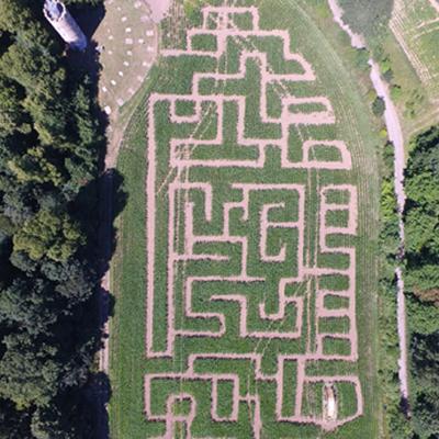Labyrinth.2 1