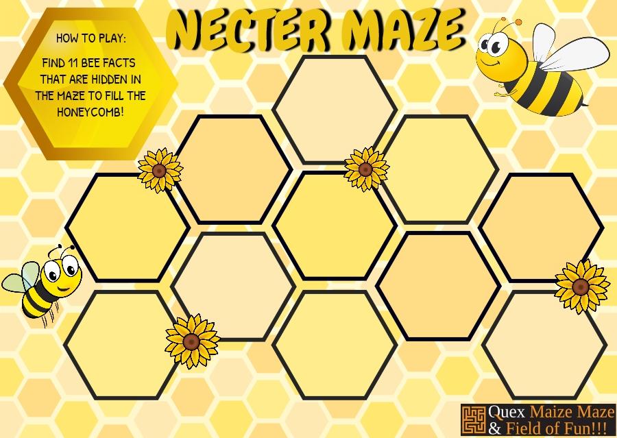 nectar maize
