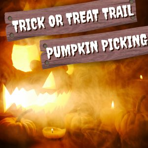 Pumpkin Picking And Trick Or Treat Trail