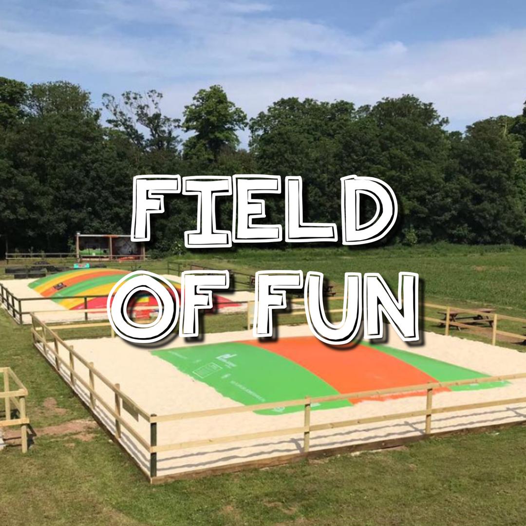 Field of Fun Website