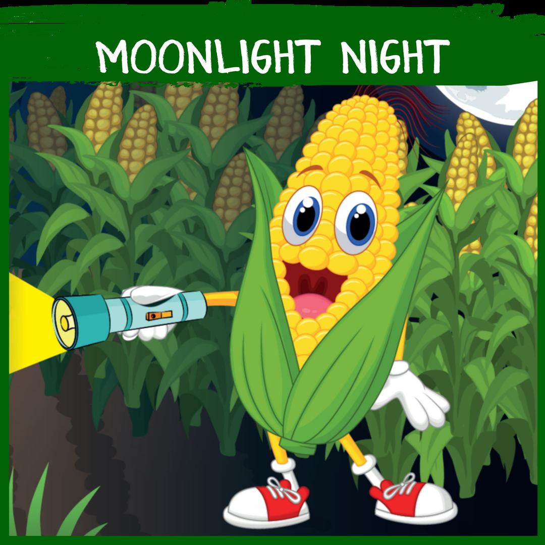 Moonlight Night - 7