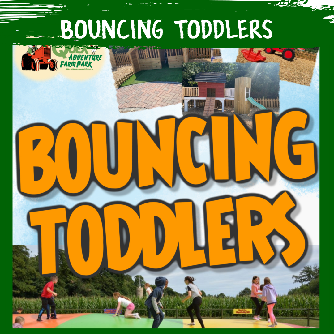 Bouncing Toddlers - 1